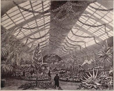 Interiör af trädgårdsutställningen.<bEfter originalteckning för »F. S. H.» af P. Hedman.