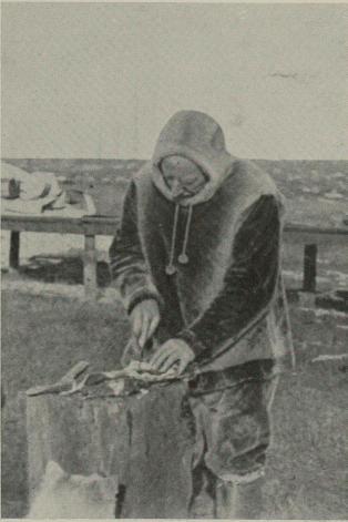 Roald Amundsen var meget interessert i at maten skulde være best mulig og<bvar selv en god kokk.