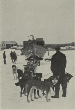 """""""Norge"""" nådde Teller og med motorbåt kom vi til Nome.<bHundene trekker motorbåten til iskanten."""