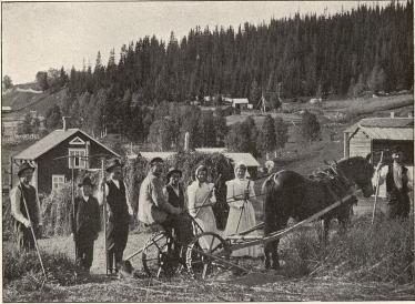 <smalFoto Strömqvist, Hernösand.</smal<bHöbärgning i Alanäset, Jämtland
