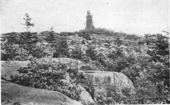 Utsiktstornet (Water Tower), Slottsskogen (Peoples' Park)