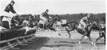 A hurdle race on May 20th 1928