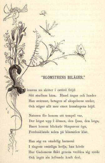 "<smalill. C. L.[=Carl Larsson]J. E.[=Jonas Engberg]</smal<b<bi""BLOMSTRENS BILÄGER.""</bi"