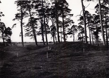 Här vila svenskar från vikingatiden under sina<blåga gravkullar vid Grobin på Lettlands kust.