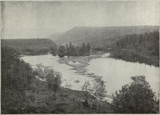 Ångermanälvens södra gren vid Helgum. Timmerstockar flyta på älven.