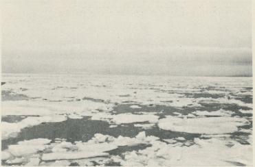 """<bFoto Ad. Hoel ombord på """"Krassin"""" 1928.<bDrivis norr om Spetsbergen."""