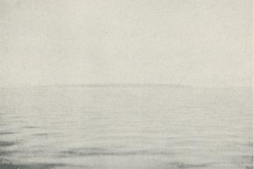 <b<bFoto  Sörensen  1930.<bVitön från havet.<bCopyright Svenska Dagbladet.