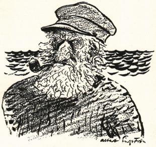 Kapten Vefling såg ut som en risig buske.