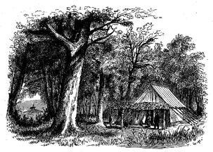 Grants högqvarter vid Vicksburg