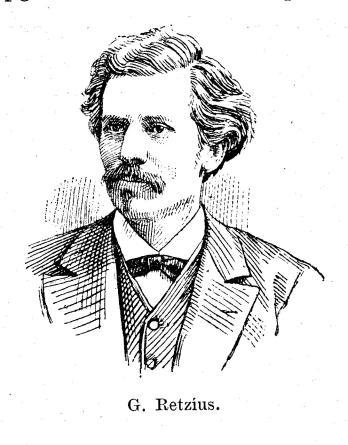 G. Retzius.