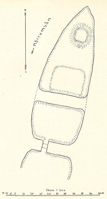 Fig. 10. Elleholm. Planteckning av P. H. Enger.