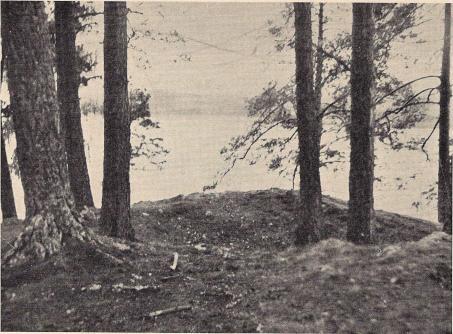 Fig. 13. På Husholmen å Lidboholm (Ön) märkas två stora tomtningar, den ena<bkanske för ett ekonomihus, den andra för bostadsborgen. Bilden visar denna senare plats.<bFoto: Nils Olsson 1938.