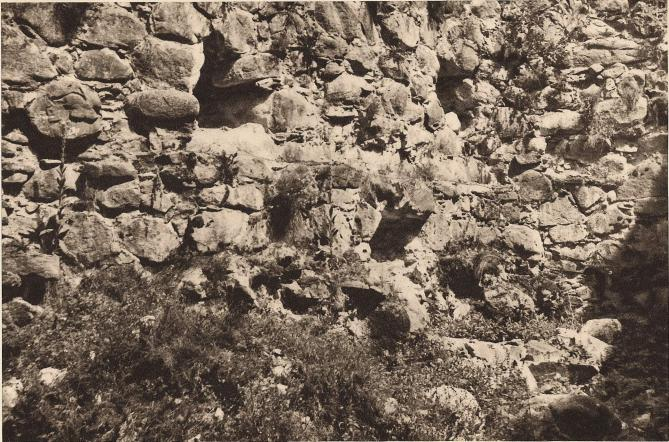 Kronobergs slott. Parti av det medeltida rundtornet innanför den under Gustav Vasa byggda nordöstra rondellen. Övre<blinjen av den nedre våningen är i det inre markerad av bjälkhålen; man kan också följa den i det yttre genom en delvis<bbibehållen stenkrans. På denna har kanske ursprungligen rest sig en överbyggnad av trä. — Foto: Nils Olsson 1938.