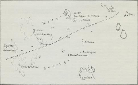 Situationsplan over Grisebaaerne.