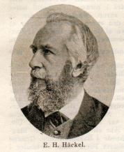 E. H. Häckel.