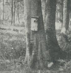 Fig. 1 Redekasse til Mejser.