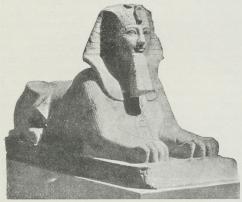Ægyptisk Sfinks.