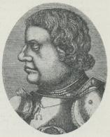 F. v. Sickingen.