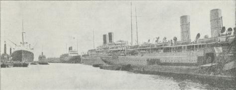 Fig. 3. »Liners« i Tilbury Docks. London.