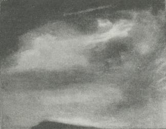 Fig. 1. Cirrus.