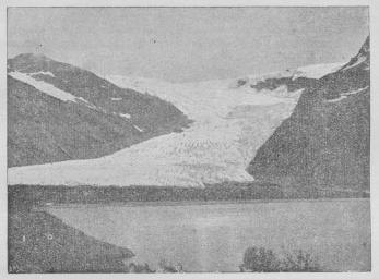 Fig. 1. Svartisen (Nordland).