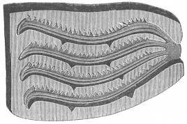 Form av sten för gjutning av fyra bronssågar, liknande ovanstående fig. Skåne. <su1</su/<su2</su.