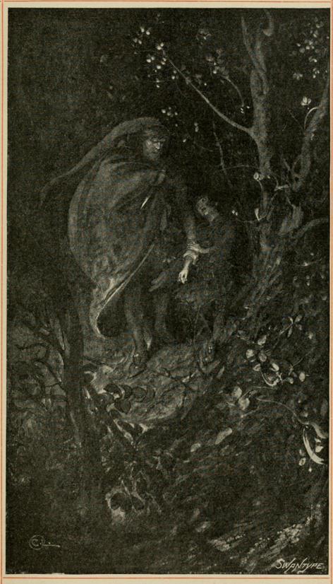 <smalIll. C. L.[=Carl Larsson]SWANTYPE</smal<bDen sista nattvandringen.